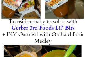 Baby solids Gerber 3rd Foods Lil' Bits - Transition baby to solids