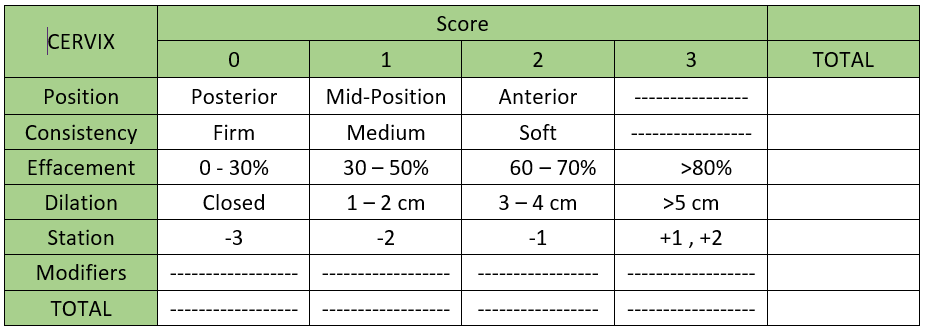 Image of a bishop score calculator to determine if you should be induced