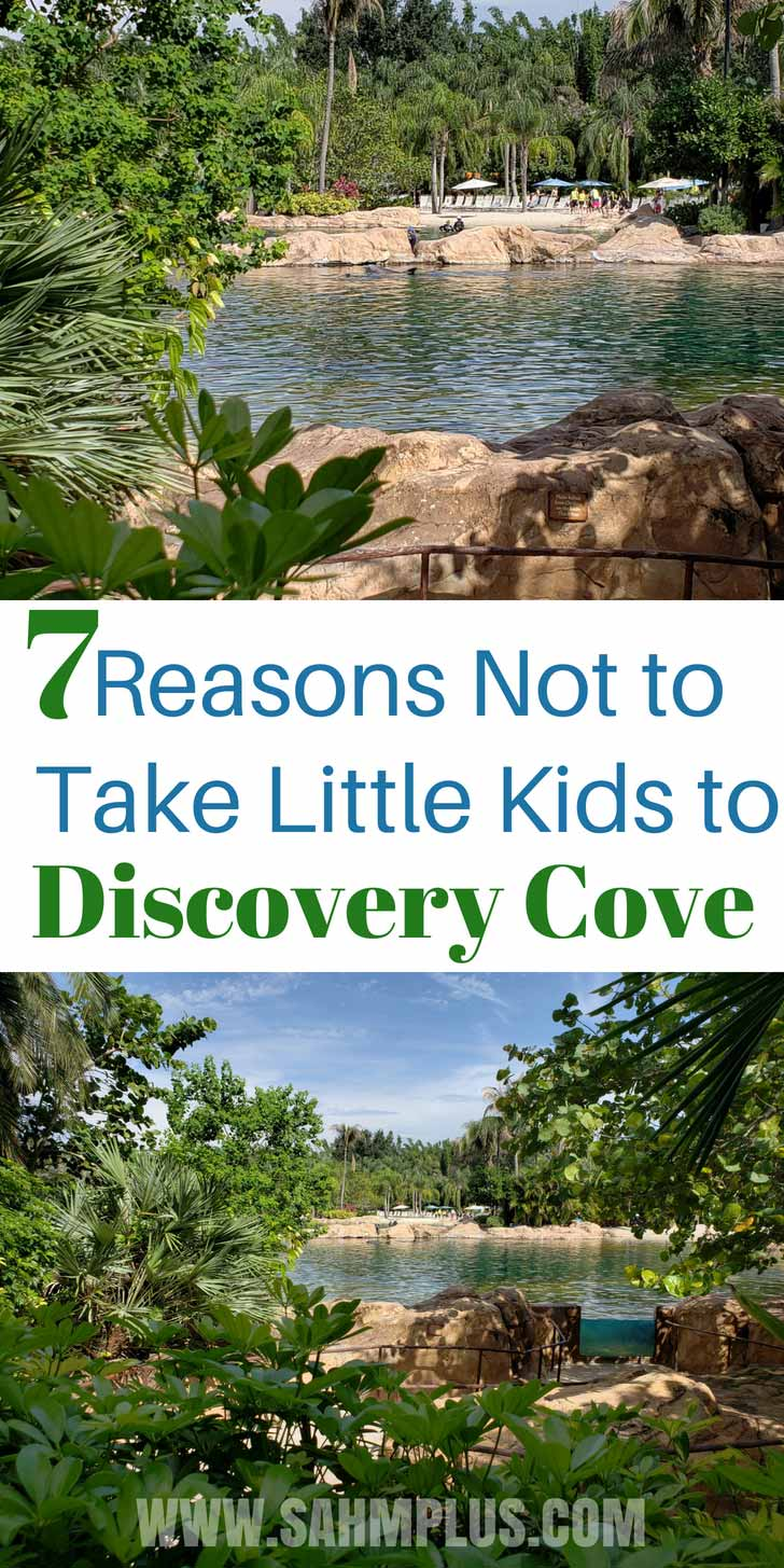 Why I'd wait to visit discovery cove when kids are older. My little kids at Discovery Cove Orlando wasn't the right choice | sahmplus.com