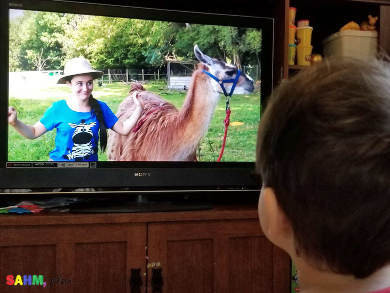 toddler watching Ellie Explorer sing about llamas