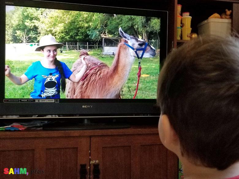 toddler watching Ellie Explorer sing about llamas