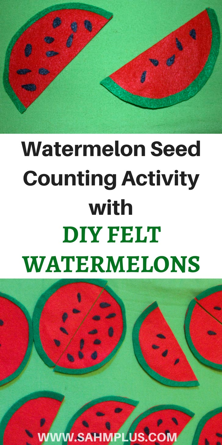 What toddler or preschooler doesn't like felt board activities? This DIY Felt Watermelon Seed Counting Activity will keep your little one busy. | www.sahmplus.com
