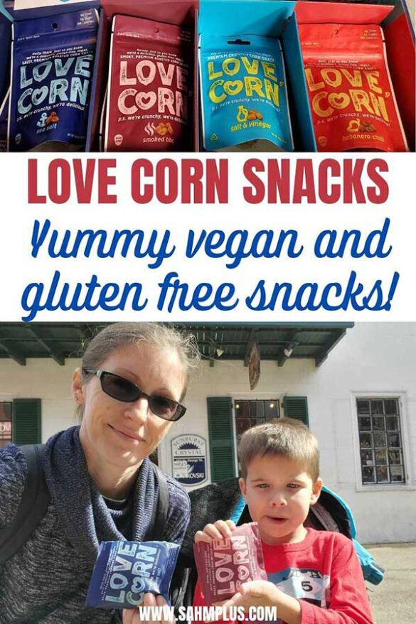 delicious vegan, gluten free quick snacks for on-the-go, at your desk, and for the family