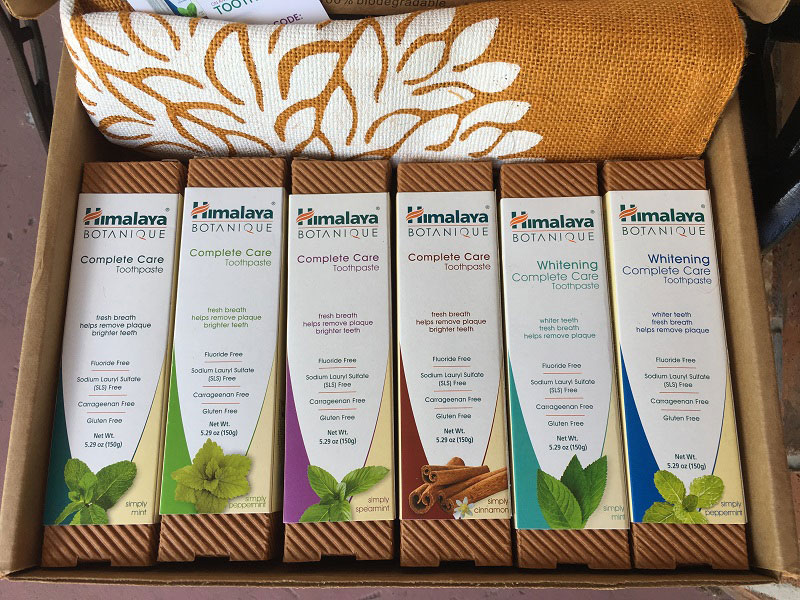 Blogger review kit of Himalaya Botanique Complete Care Toothpaste from #MomsMeet #ad www.sahmplus.com