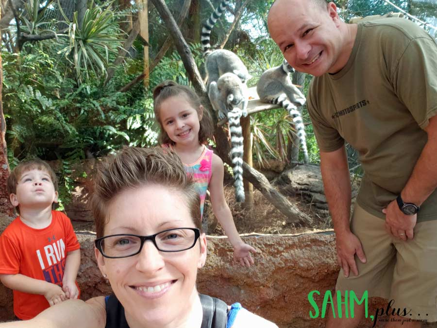In front of lemurs at The Florida Aquarium Tampa with Kids | sahmplus.com