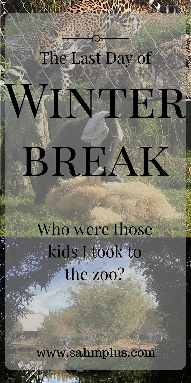 On the last day of winter break, we spent the day at the zoo