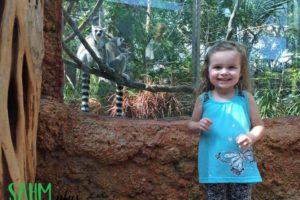 Lemurs at the FL Aquarium | sahmplus.com