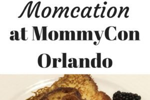 How I used MommyCon Orlando 2017 as a reason for a momcation. A weekend break from the kids, learning to be a better parent, and networking for my blog. www.sahmplus.com