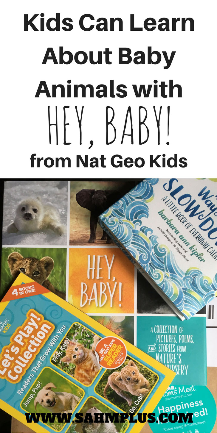 adorable and informative book about baby animals HEY, BABY! from National Geographic Kids. In partnership with #momsmeet | www.sahmplus.com