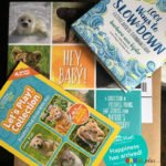 National Geographic Kids #MomsMeet program for Hey, Baby! an adorable and informative book about baby animals   www.sahmplus.com