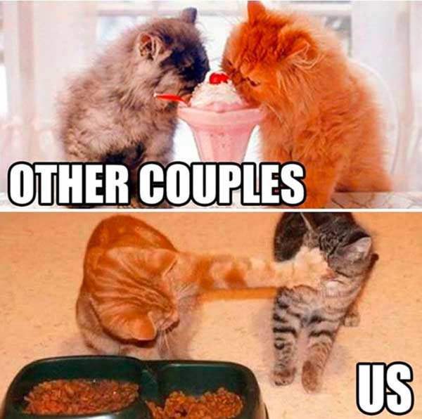 other couples so sweet marriage memes