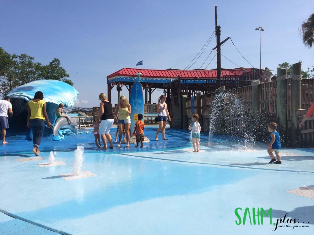 Splash Pad at The Florida Aquarium with a toddler | sahmplus.com