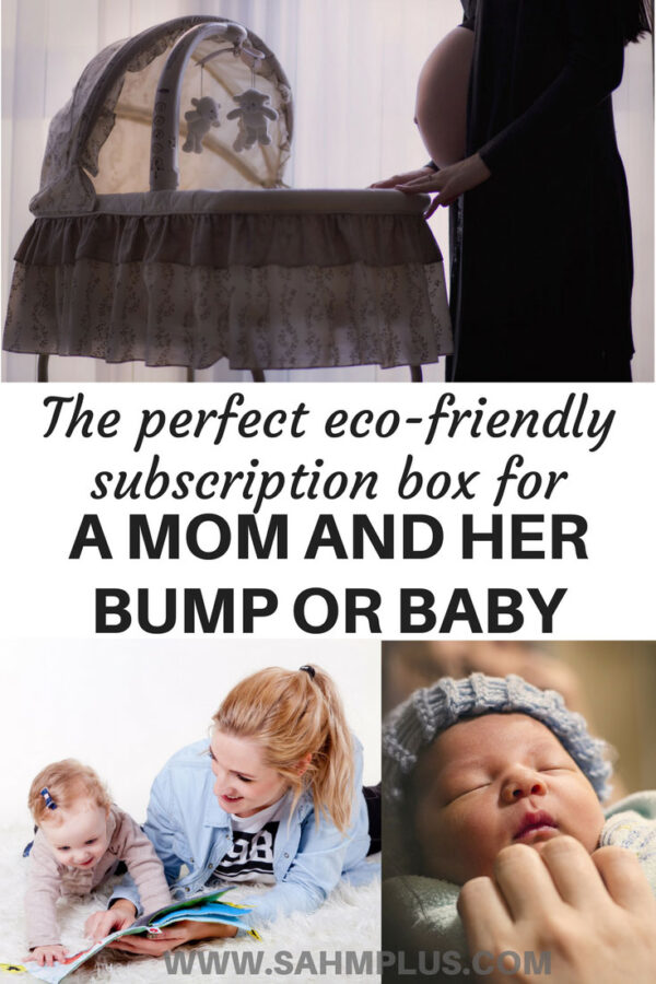 Why the Ecocentric mom subscription is the perfect gift for an expectant mom and her bump or a mom with a new or older baby   www.sahmplus.com