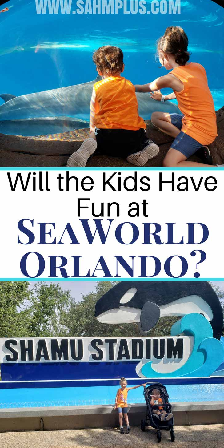 Thinking about taking kids to SeaWorld Orlando? Wonder if there's enough for them to do and see to keep them happy? | sahmplus.com