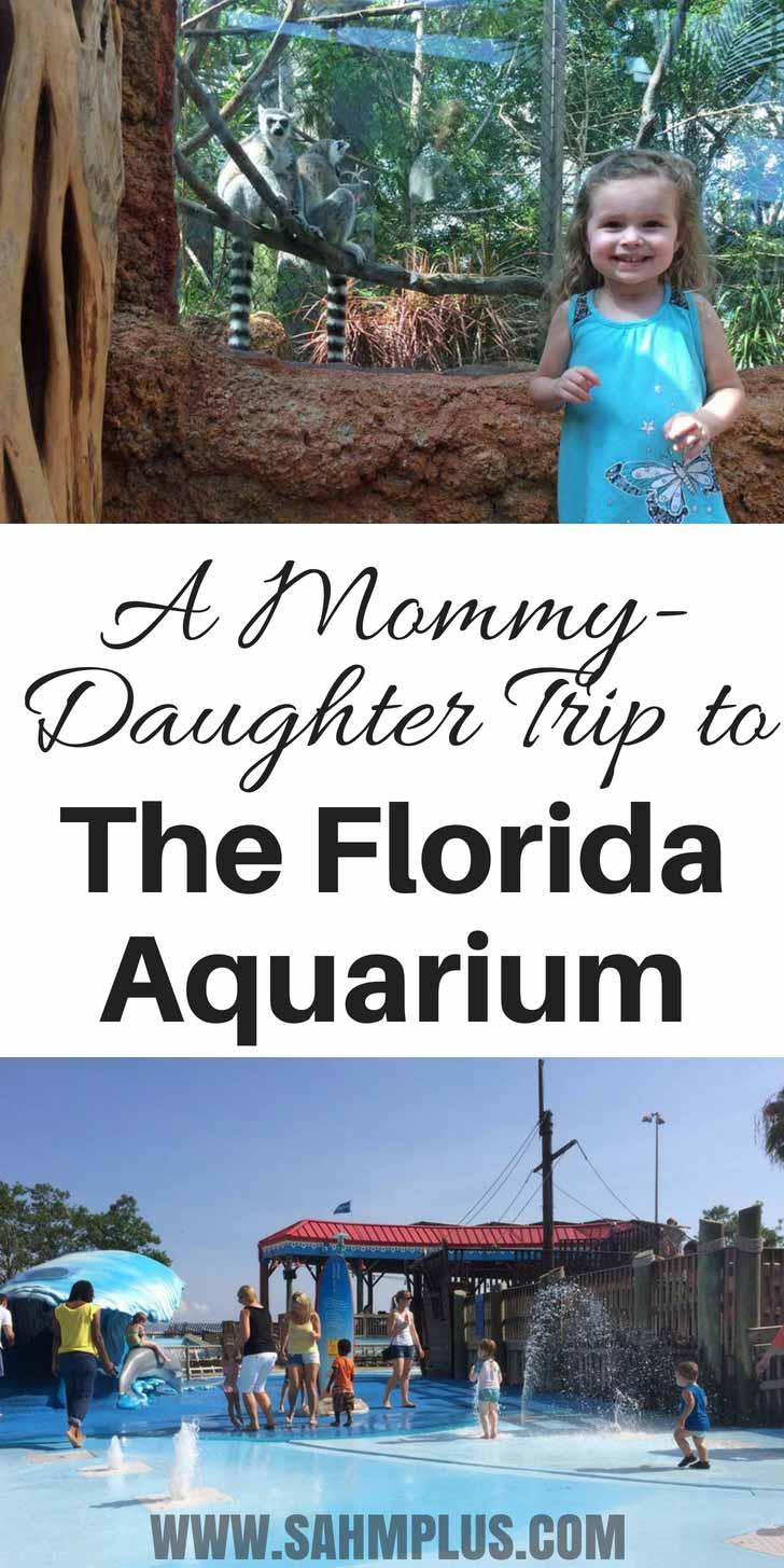 The Florida Aquarium Review - a mother daughter trip to The Florida Aquarium. | sahmplus.com
