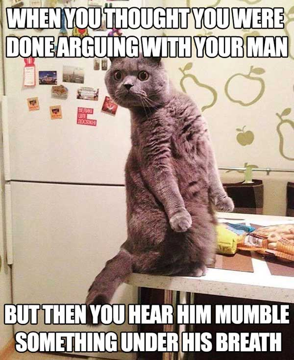 arguing with your man marriage meme
