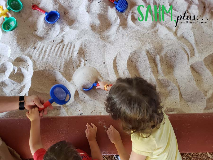 Tiny fossil dig at Dinosaur World on our vacation in and around Tampa with kids | sahmplus.com