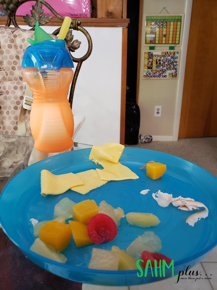 Food partially eaten on toddler plate   sahmplus.com