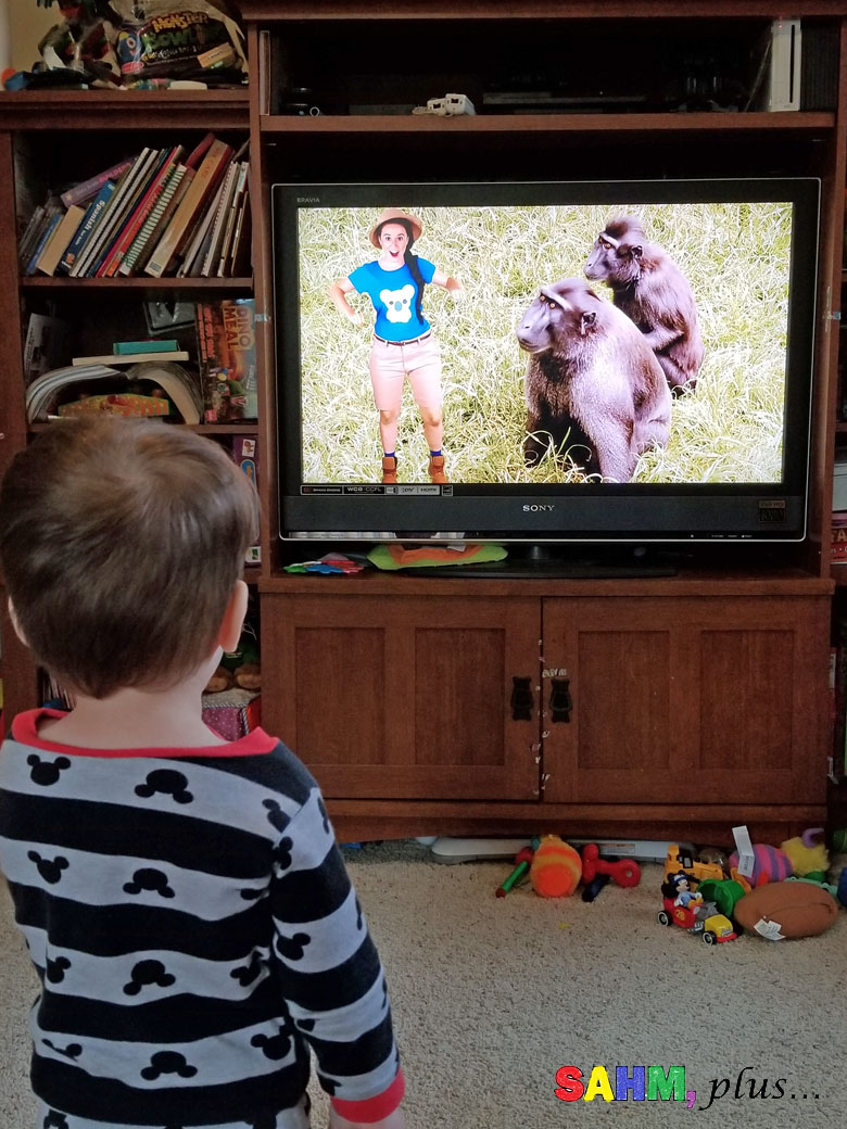 toddler in front of TV, watching Ellie Explorer - episode about apes to accompany our home preschool jungle theme for the week