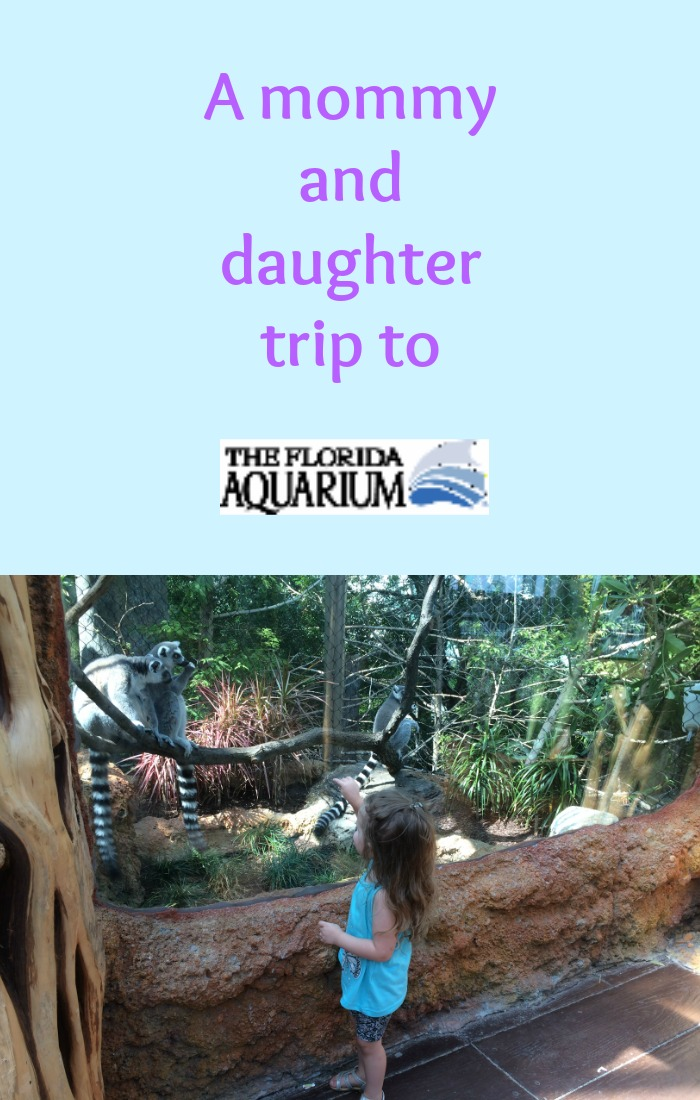 travel review the florida aquarium