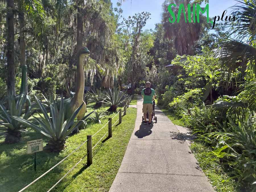 Walking through dinosaur world plant city | sahmplus.com